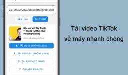 Snaptik: Tải video tiktok không có logo, hình mờ, watermark miễn phí